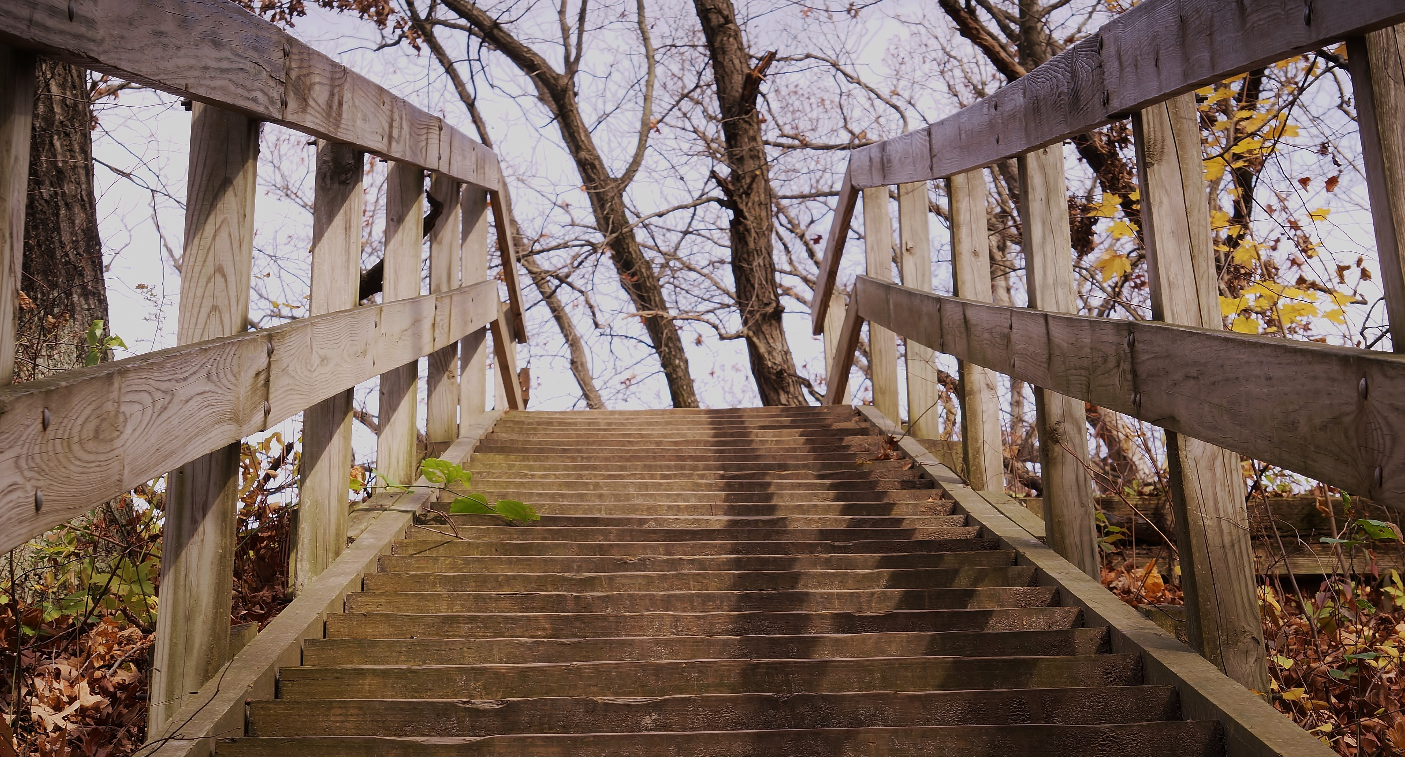 Starved Rock Stairway_110314