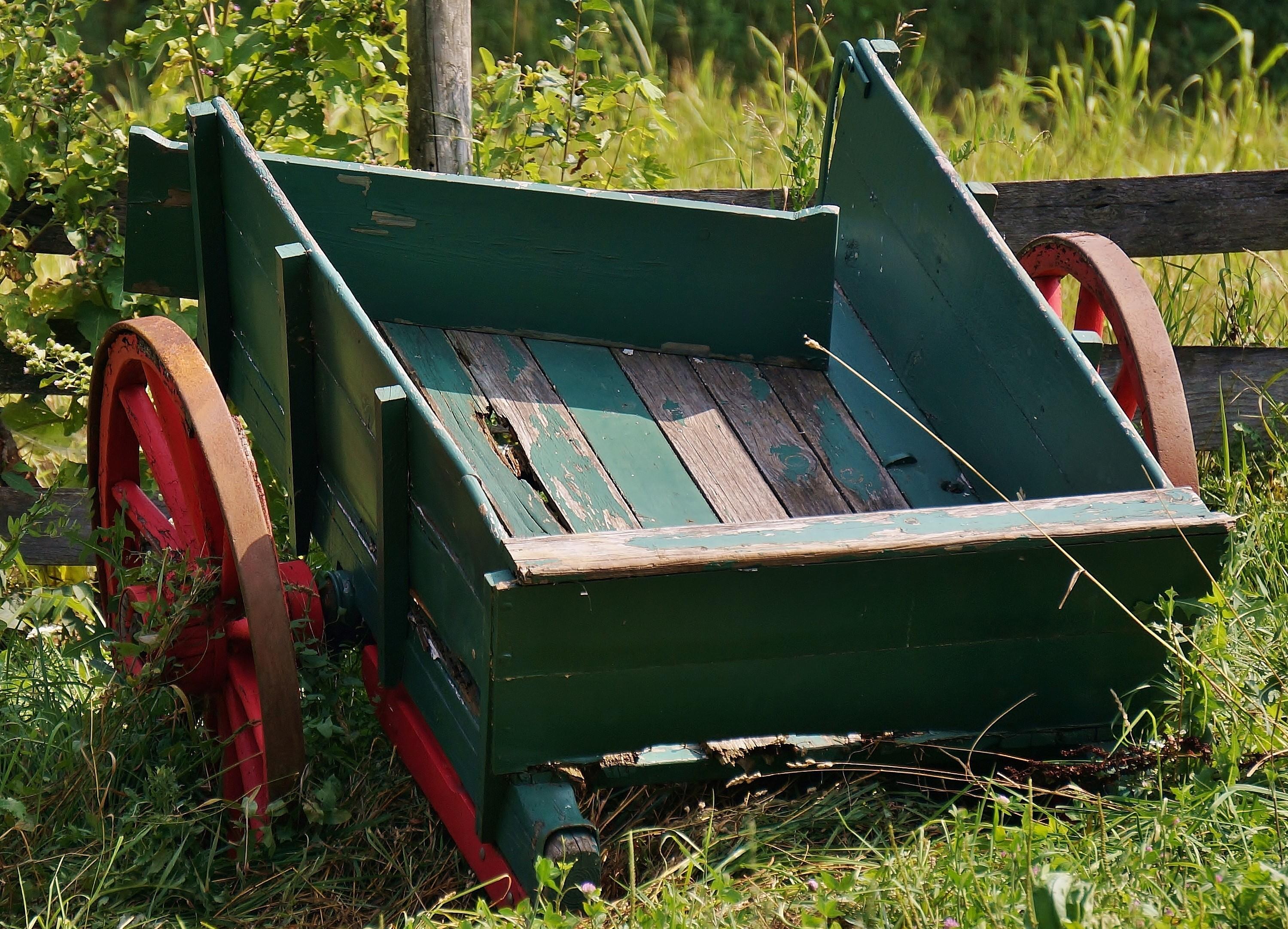 Wagon_080214