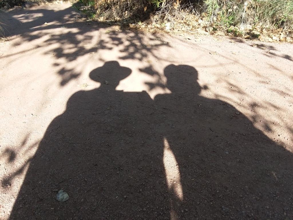 GardenShadows_072620