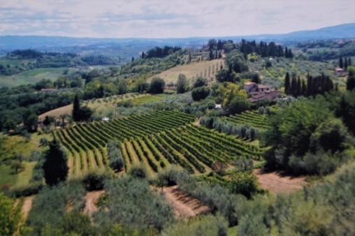 Tuscany2_July2011